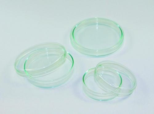 Glazen petrischalen LLG